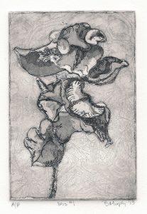 Iris 1 art Bridget Murphy Design Printmaking