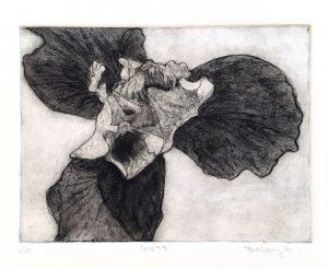 Iris Art Bridget Murphy Design Printmaking