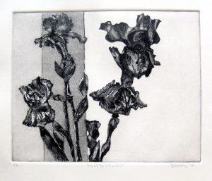 Iris at the Window Art Bridget Murphy Design Printmaking