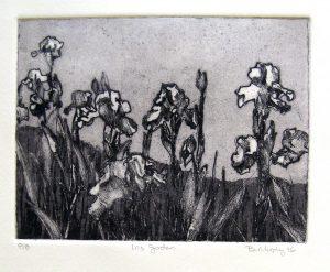 Iris Garden Art Bridget Murphy Design Printmaking
